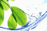 生産工程を一括管理、高度な製法で栄養素を失わないMXBブレンドのイメージ写真