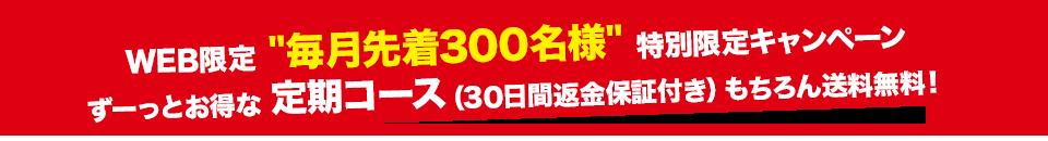 大ヒットベストセラー期間限定キャンペーン先着300名様限定!